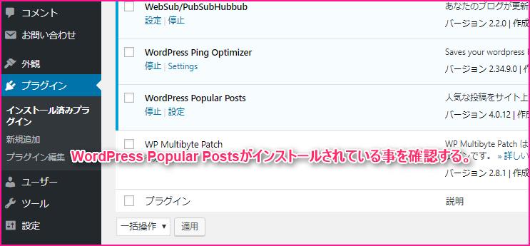WordPress Popular Postsでブログの人気記事を表示させる方法の説明画像4