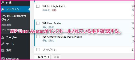 WordPressプラグインのWp User Avatarを設定する方法の説明画像4